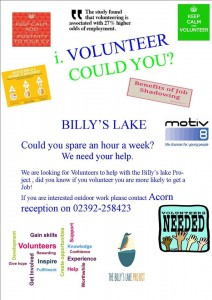 Billy's Lake Working Party @ Billy's Lake | Denmead | United Kingdom