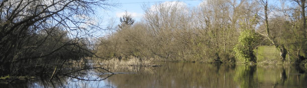 Billy's Lake
